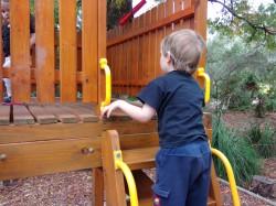 Oppo-N1-Playground