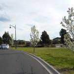 CM1 Road