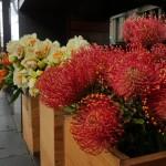 GS6 Flowers